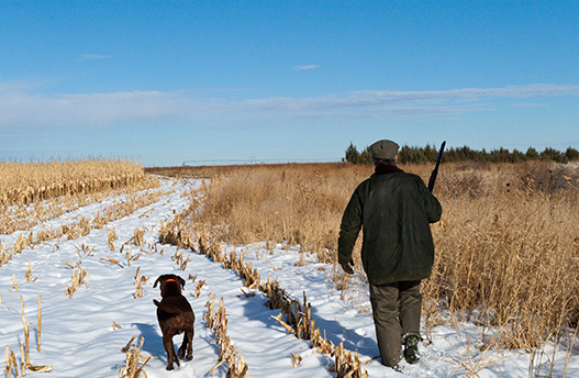 Hunting in Colorado's Chop Hills