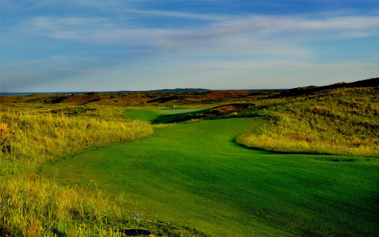 the mulligan tour at ballyneal image